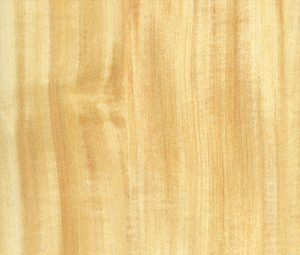 fusta-castanyer finestres fusta catàleg Carreté Finestres